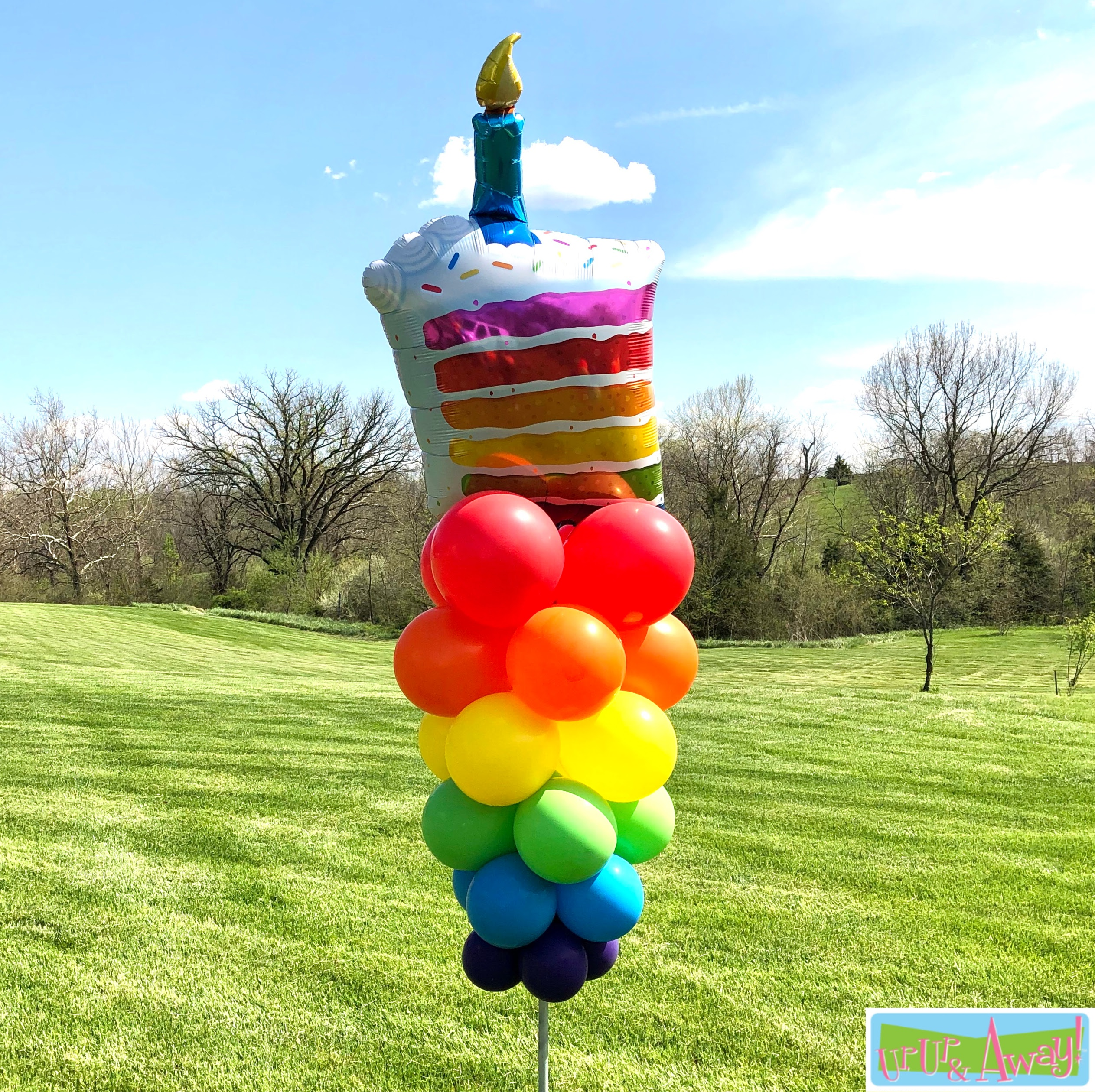 Piece of Cake | Up, Up & Away! Balloons