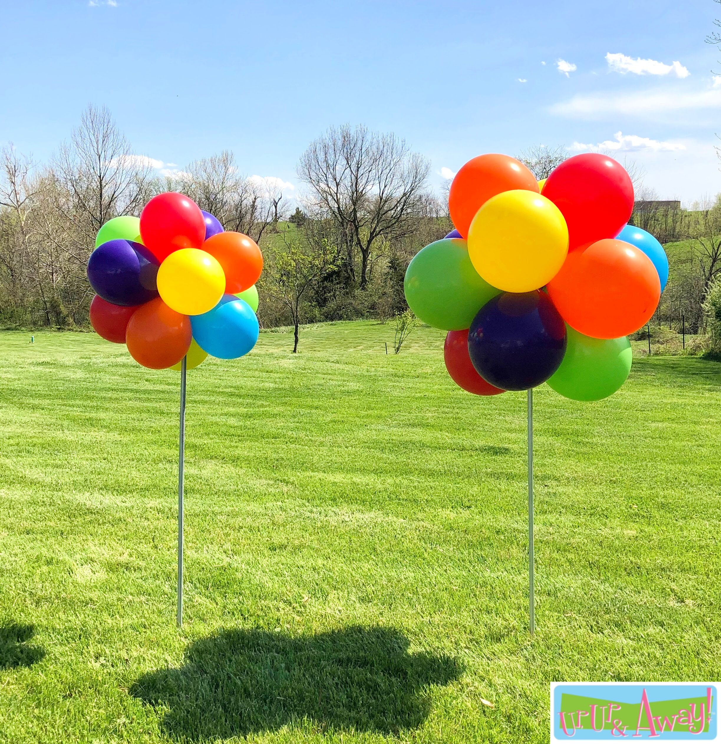 Balloon Topiaries | Up, Up & Away!